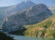 moving_company_albania